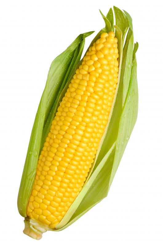 Oil made from corn is usually polyunsaturated.