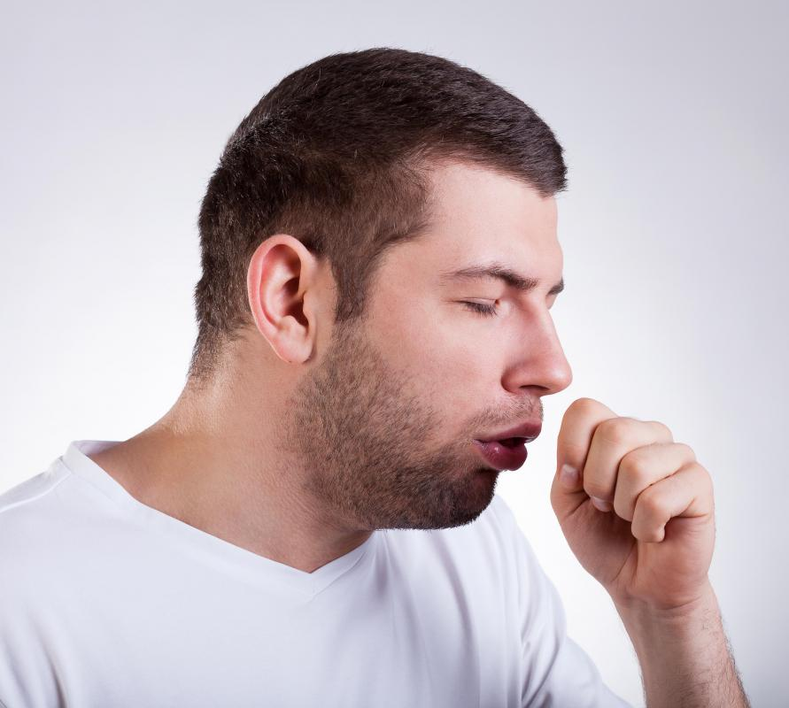 Red root extracts may be helpful in controlling coughs.
