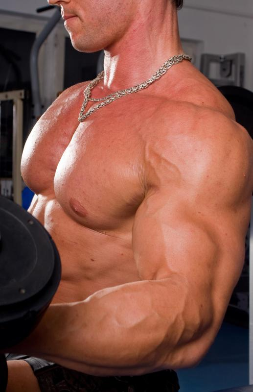"Bodybuilders are sometimes referred to as ""muscle men""."