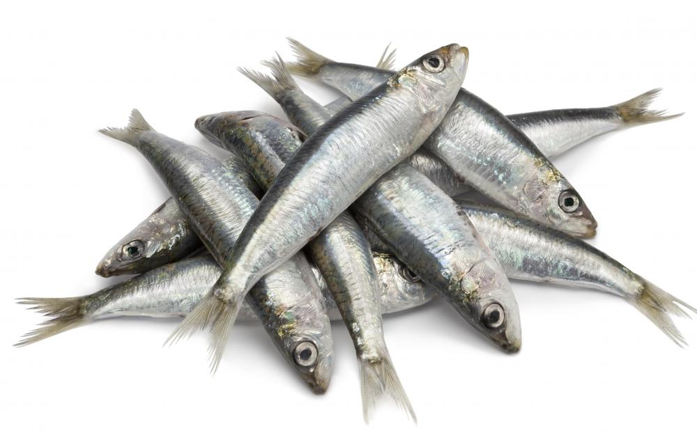 Sardines, as a source of purines, can cause gout.
