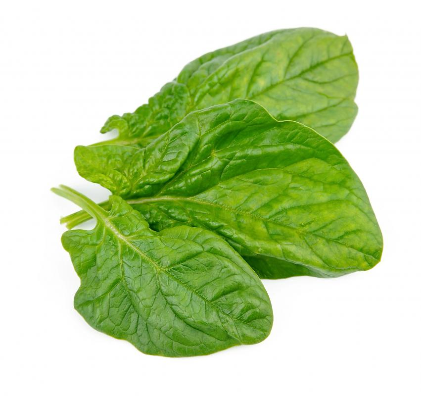Spinach is a good source of flavonoids.
