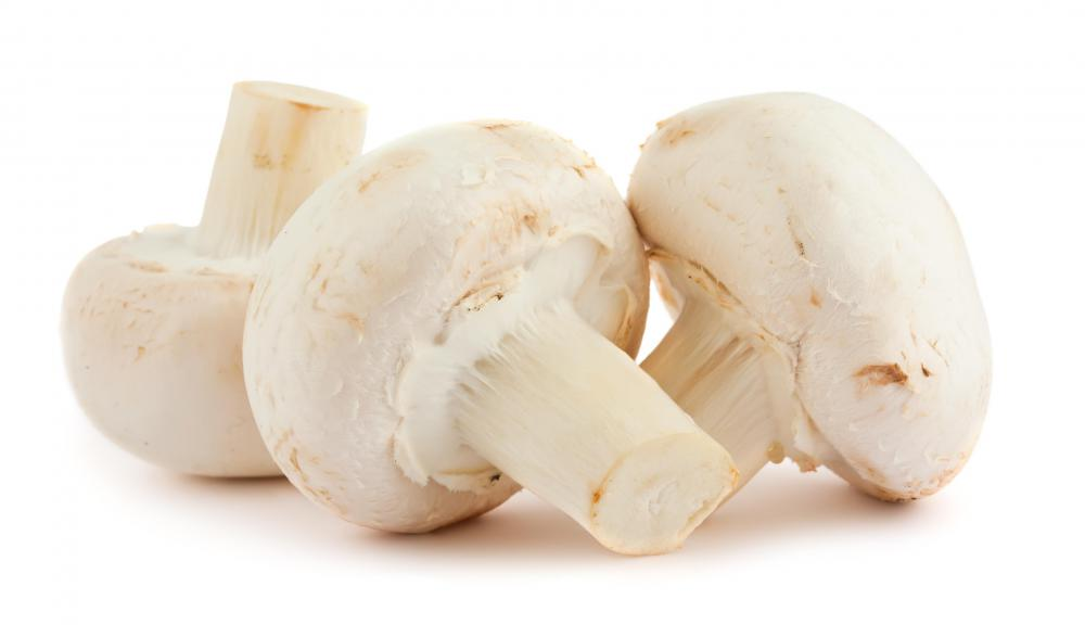 Mushrooms should generally be avoided by people with gout.